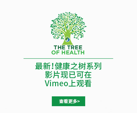 US-CN-WEB-BANNER-Tree-of-health-Eblast-01
